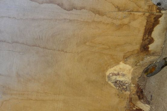 Oak Crotch Planks Feature Image
